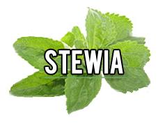 stewia