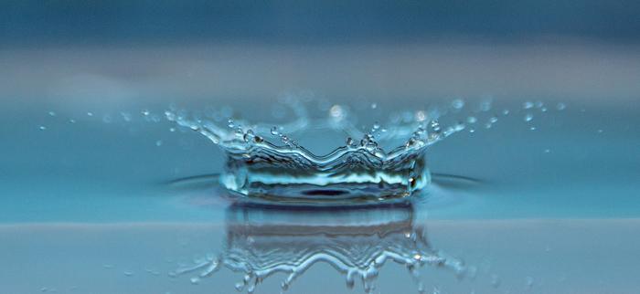 zatrzymwanie wody w organizmie