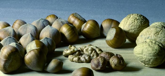 orzechy włoskie laskowe - źródło magnezu