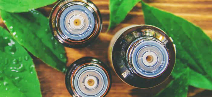 olejek herbaciany właściwości