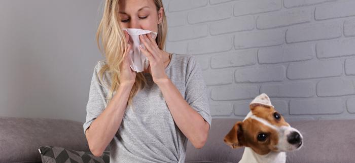 alergia na zwierzęta
