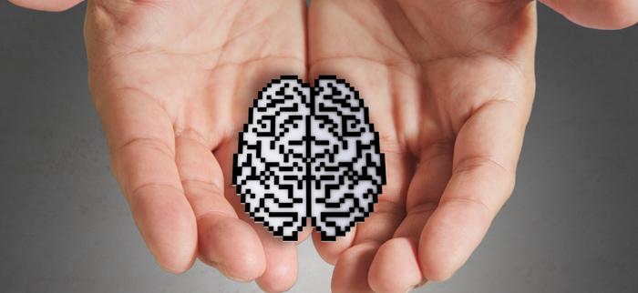 co jeść aby odżywić mózg?