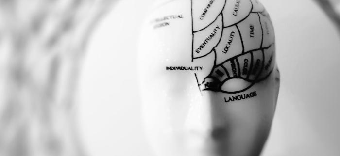 wpływ węglowodanów na pracę mózgu